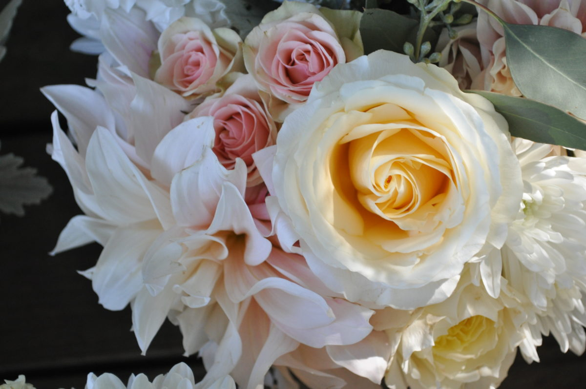 Marin Wedding - blush, ivory, white, cream and peach hues. Roses, mums and the cafe au lait dahlia. Absolute perfection | floral design by Natasha Price and Evan Falconer of Paper Peony